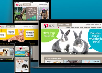 SF SPCA Web Banner Slides