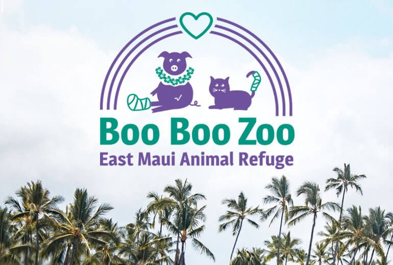 Boo Boo Zoo Logo Project