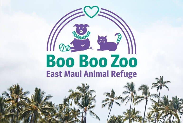 Boo Boo Zoo Logo Project