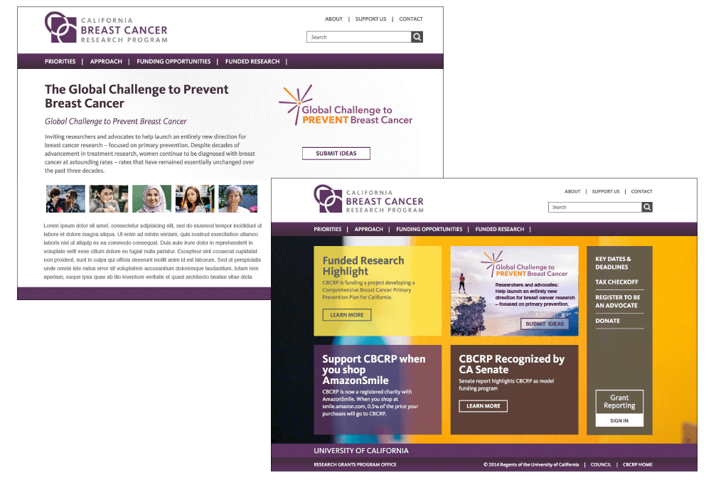 Homepage and Landing Page for CBCRP's Global Challenge to Prevent Breast Cancer