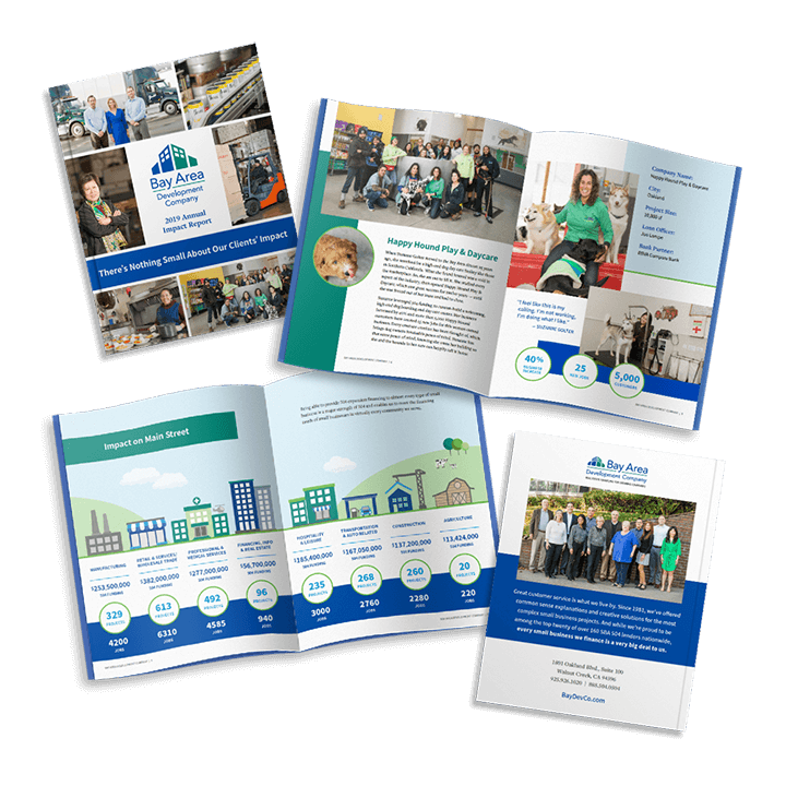 Bay Area Development Company Annual Report Design