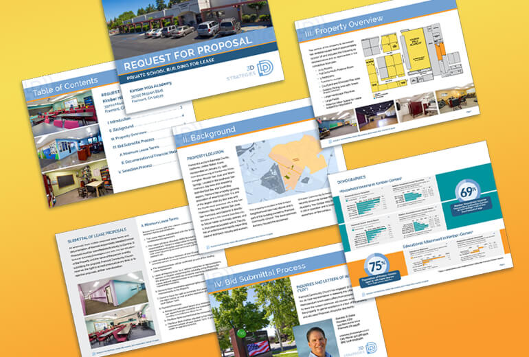 Pages from 3D Strategies RFP Design